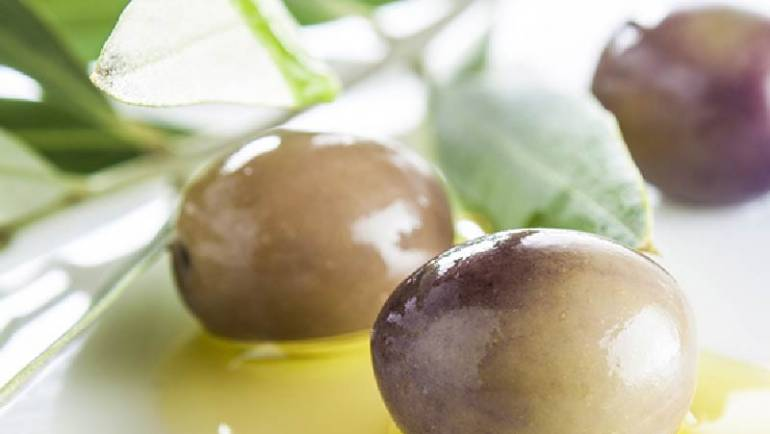 3RD International Yale Symposium on Olive Oil & Health